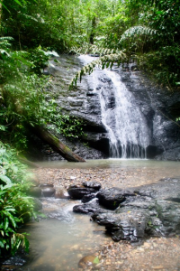 A waterfall and rockpool in Indonesia