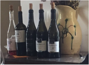 Local wines - not to be missed!