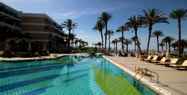 Palm Trees around the pool at Asamina Suites, Cyprus