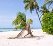 The beach at the Maldives Hurawalhi Island Resort