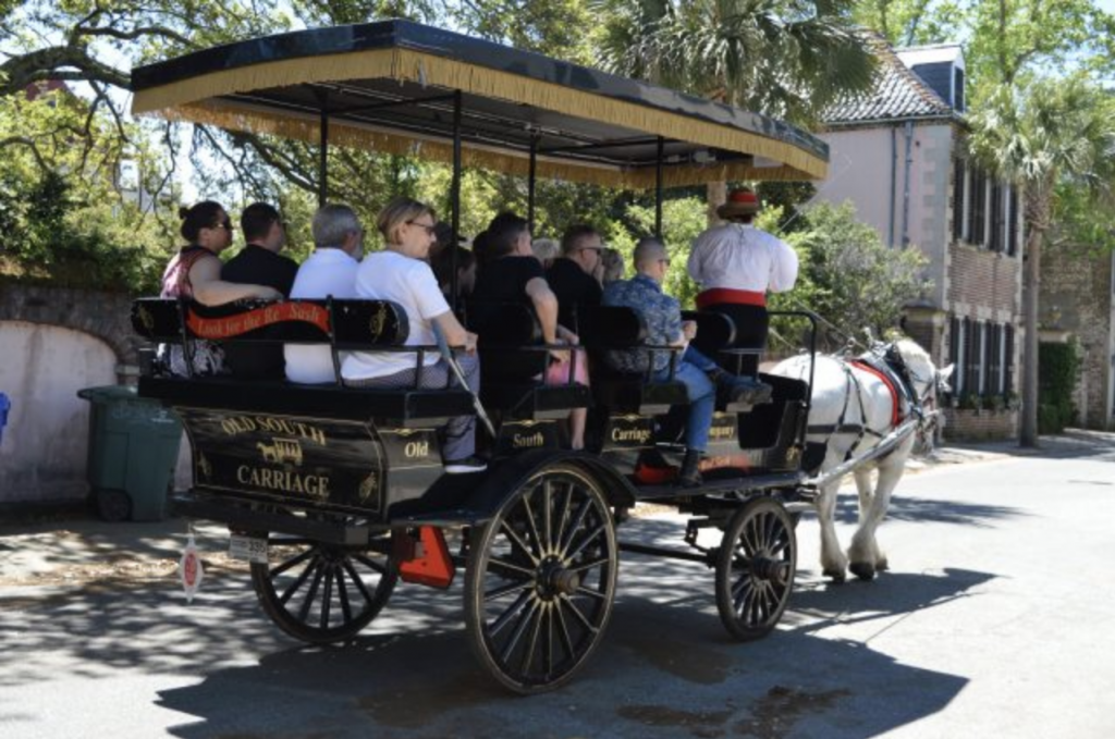 Experience Charleston's rich history on a horse and carriage tour or sail aboard a three mast schooner